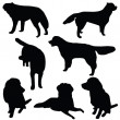 Set of dogs silhouette isolated — 图库照片