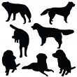 Foto Stock: Set of dogs silhouette isolated