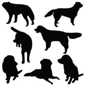 Set of dogs silhouette isolated — Stock Photo