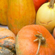 Stock Photo: Ripe orange pumpkin