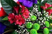 Colorful flowers bouquet — Stockfoto