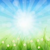 Summer Abstract Background with grass and tulips against sunny s — Foto de Stock