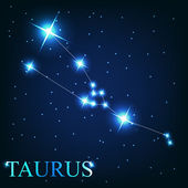 Vector of the taurus zodiac sign of the beautiful bright stars o — 图库照片