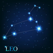 Vector of the leo zodiac sign of the beautiful bright stars on t — Photo