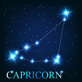 Vector of the capricorn zodiac sign of the beautiful bright star — Stock Photo