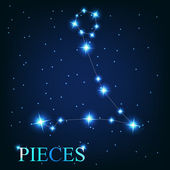Vector of the pieces zodiac sign of the beautiful bright stars o — Zdjęcie stockowe
