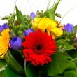 Colorful flowers bouquet isolated on white background. — Stockfoto #9931939