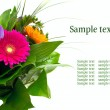 Colorful flowers bouquet isolated on white background. — Stock Photo #9931953