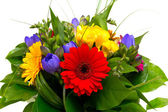 Colorful flowers bouquet isolated on white background. — Stok fotoğraf