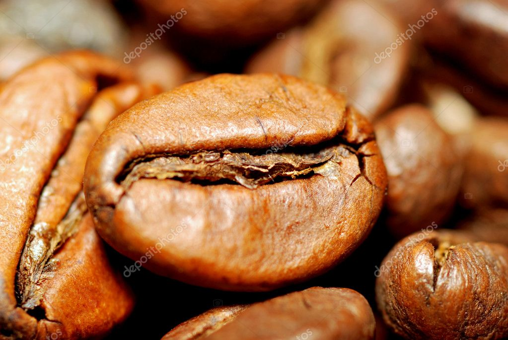 Coffee beans macro  Stock Photo #10206732