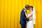 Bride and groom kissing against wall — Stock Photo
