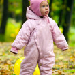 图库照片: Little baby girl in autumn leaves