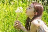 Little Girl Busy Blowing Dandelion Seeds In the Park — Stock Photo