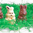 Black and white easter bunnies — Stock Photo #9027371