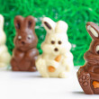 Black and white easter bunnies — Stock Photo