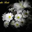 Stock Photo: Beautiful white flowers