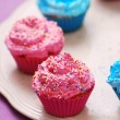 Freshly baked pink and blue cupcakes — Stock Photo