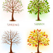 Four seasons - spring, summer, autumn, winter. Art tree beautiful for your design. Vector illustration. — ストックベクタ