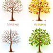 Four seasons - spring, summer, autumn, winter. — Stok Vektör