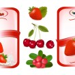 Two red labels with berries. Vector illustration. — Stock Vector