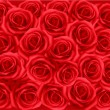 Background with red roses. Vector illustration. — Stok Vektör