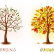 Two seasons - spring, autumn. Art tree beautiful for your design. Vector illustration. — Cтоковый вектор