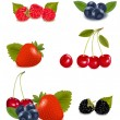 Big group of fresh berries. — Stock Vector #10042829