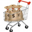 Shopping cart with money bags with dollars, euro and pound. — Stock Vector