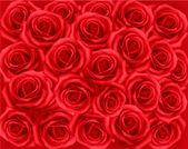 Fondo con rosas rojas. ilustración vectorial. — Vector de stock