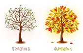Two seasons - spring, autumn. Art tree beautiful for your design. Vector illustration. — Stock Vector