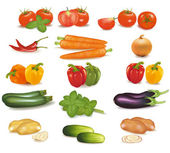 The big colorful group of vegetables. — Stock Vector