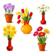 Spring and summer colorful flowers in vases Vector illustration — Stock Vector
