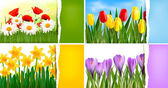 Set of nature backgrounds with colorful spring and summer flowers and ripped paper Vector — Stock Vector