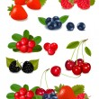 Big group of fresh berries. Photo-realistic vector illustration. - Imagen vectorial