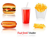 Big group of fast food products. — Stock Vector