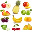 Stock Vector: Big group of different fruit. Vector.