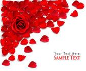 赤いバラの花びらの背景。ベクトル — ストックベクタ