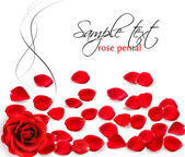 Background of red rose petals. Vector illustration. — 图库矢量图片