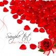 Background of red rose petals. Vector — Stock Vector