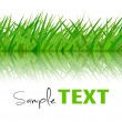 Royalty-Free Stock Vector Image: Background with green grass. Vector.