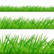 Three grass borders. Vector. — Stock Vector