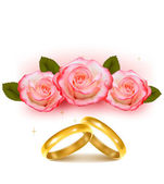 Gold wedding rings in front of three pink roses Vector — Vecteur