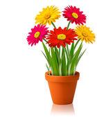Fresh spring color flowers Vector illustration — Stock Vector