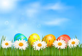 Easter background Easter eggs laying in green grass with daisy under blue sky Vector — Stock Vector