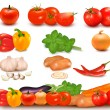 The big colorful collection of vegetables and vegetable design border. Vector. — Stock Vector #9729660