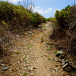 Uphill path — Foto Stock