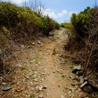 Uphill path — Stockfoto