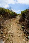 Uphill path — Stock Photo