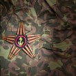 Stock Photo: Marines star