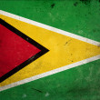 Grunge Flag of Guyana — Stock Photo #8668021